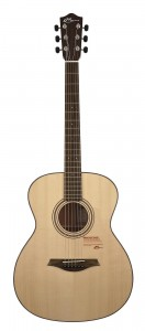 Mayson Luthier Series M1/S